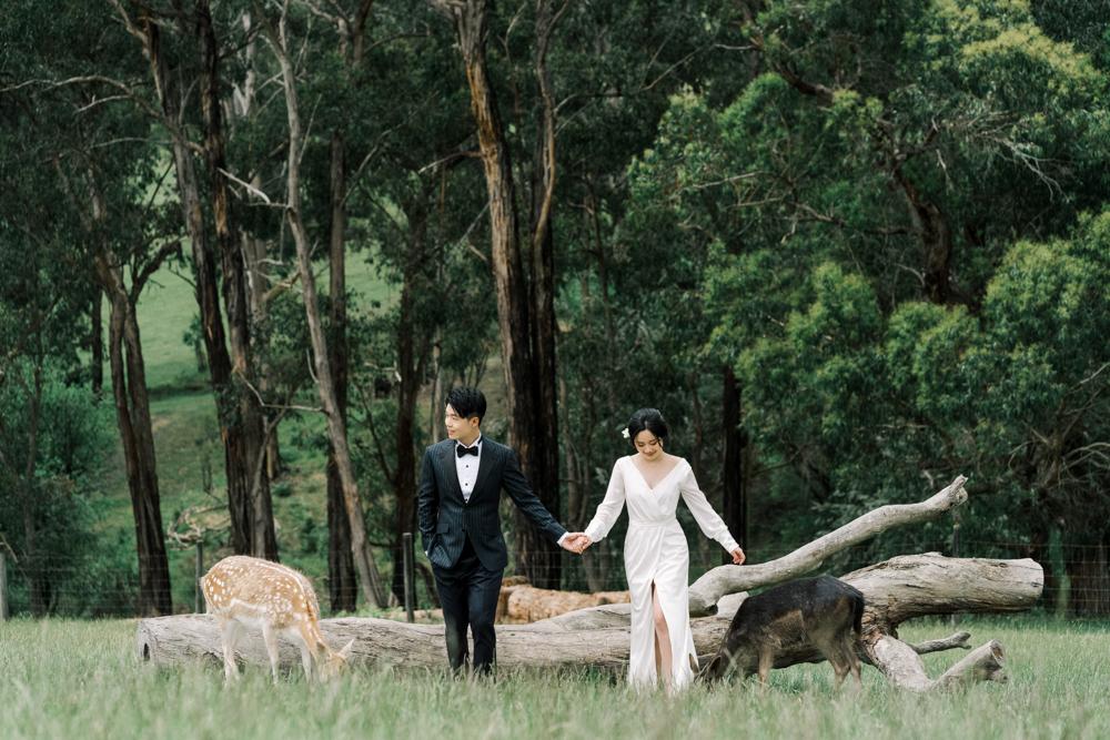 TheSaltStudio_悉尼婚纱摄影_悉尼婚纱照_悉尼婚纱旅拍_AndrewYuanxu_5.jpg